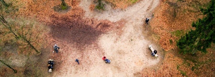 vista aerea de bosque otonal con personas paseando