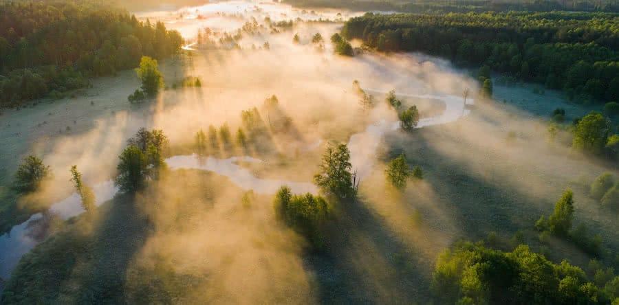 vista aerea de paisaje neblinoso con rio y arboles al amanecer
